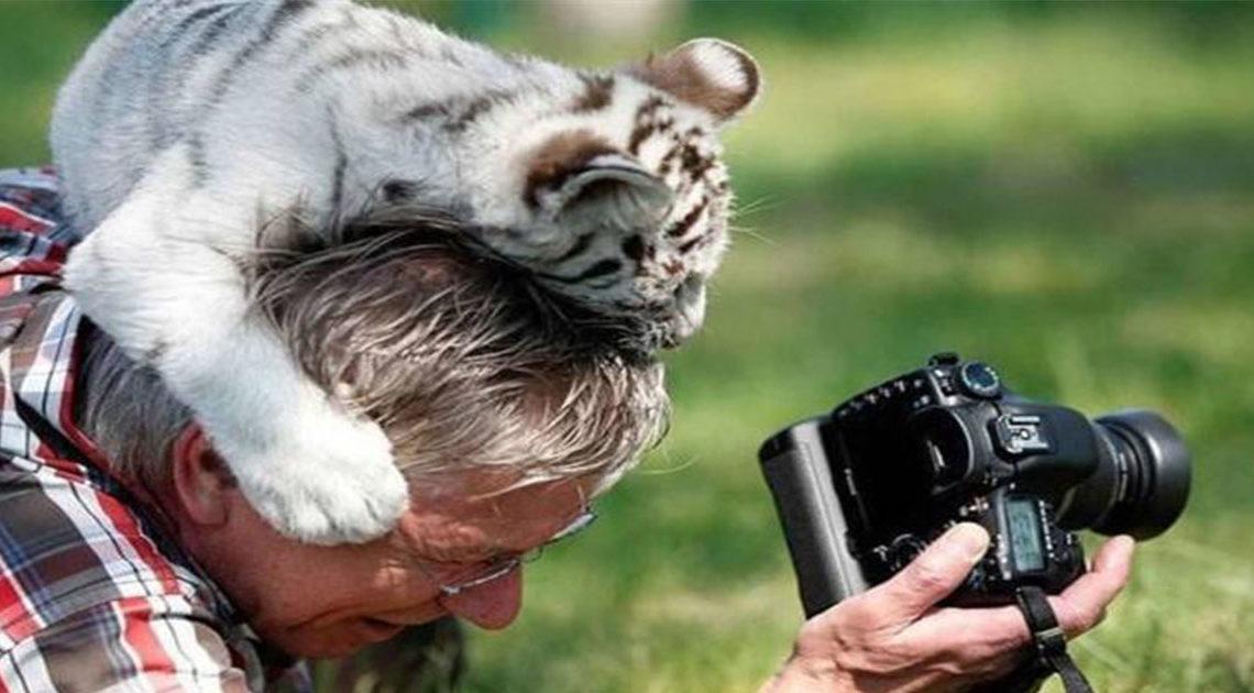 Фотографы дикой природы: всё, что остаётся за кадром