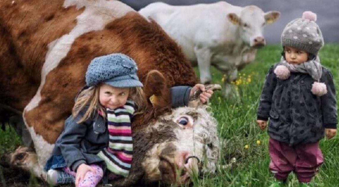 Растить детей — это весело: 17 фото — фактов