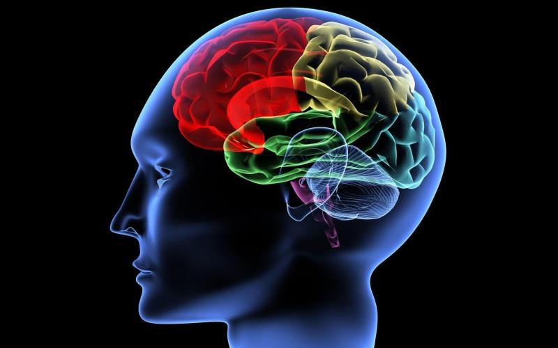 10 подтверждений тому, что наш мозг способен на все