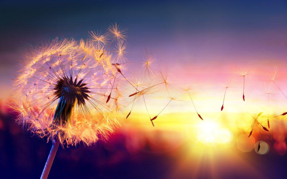 5 безотказных способов изменить свою жизнь в любом возрасте