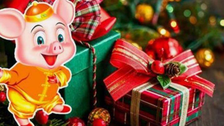 4 вещи, которые нельзя дарить на Новый 2019 год Свиньи